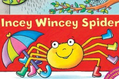 books-incey-cover